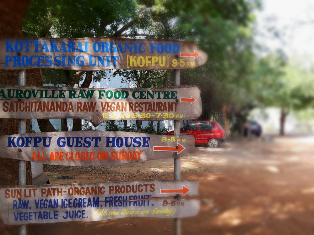 auroville vegan food copyright julia wunderlich