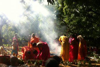 Teacher Training in Indien? Ein Erfahrungsbericht 2