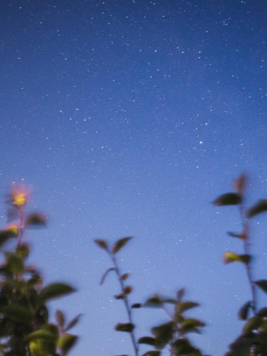 Vedische Astrologie: Das steckt hinter der Wissenschaft des Lichts 4