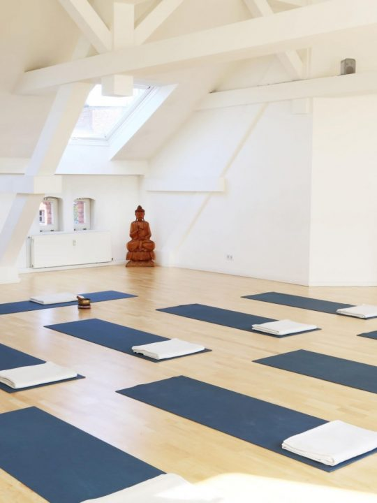 Yoga Sky: Vinyasa Yoga über den Dächern Berlins 1