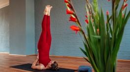 1710_yoga und zyklus2_janna_titel