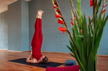 Yoga und der Zyklus, Teil 2: PMS und andere Dramen