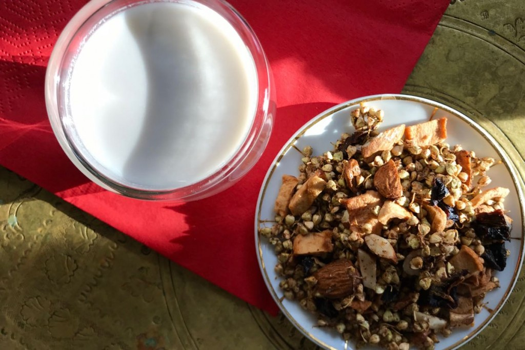 Sprouted Granola 6 (1)