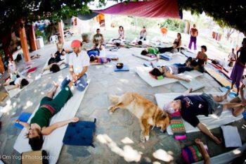 Willst du Thai (Yoga) Massage lernen?