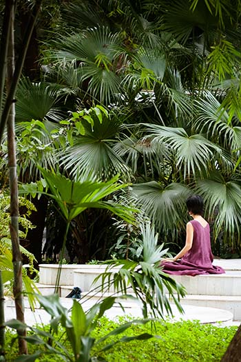 OSHO International Meditation Resort in Pune 8