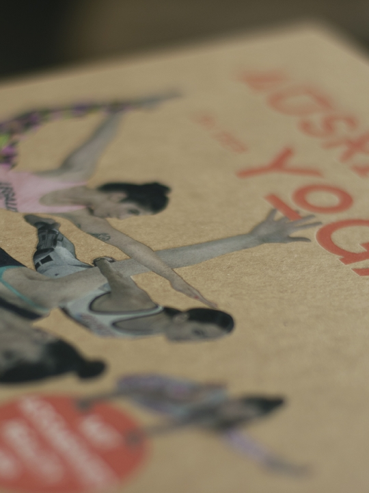 Ausrichtung in der Yoga Asana: Das neue Multimedia-Yogabuch