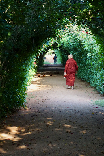 Stillsein ist leicht, wenn keiner redet: 10 Tage Vipassana-Meditation in Sri Lanka 6