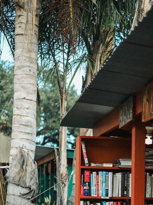 Bookspiration: Die schönste Urlaubslektüre