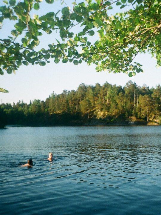 Sommersonnenwende: Von schwedischen Bräuchen und Kräuterorakeln