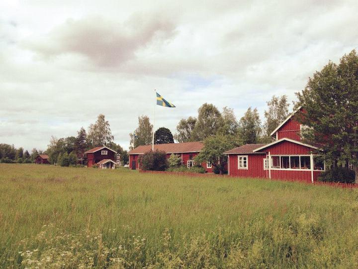 Sommersonnenwende: Von schwedischen Bräuchen und Kräuterorakeln 5