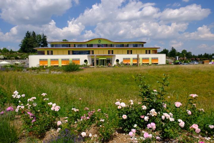 Von Rosengärten und Bergkristallen: Zu Besuch bei Primavera 9
