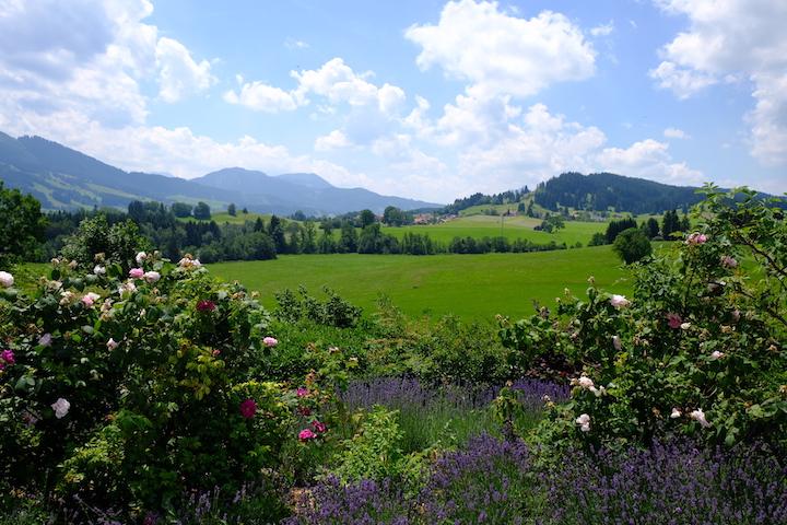 Von Rosengärten und Bergkristallen: Zu Besuch bei Primavera 4