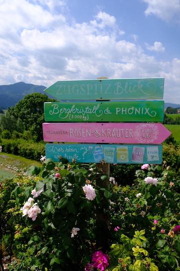 Von Rosengärten und Bergkristallen: Zu Besuch bei Primavera 6