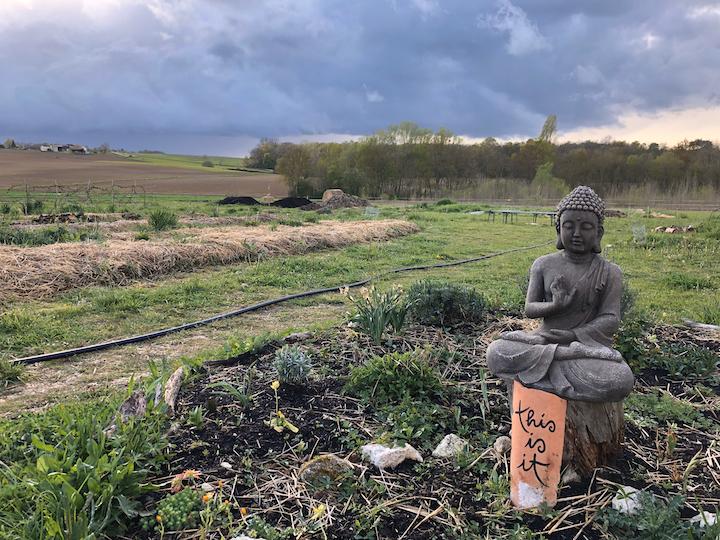 Schweigen am Lotusteich: Eine Woche im Zen-Kloster mit meinem Vater 4