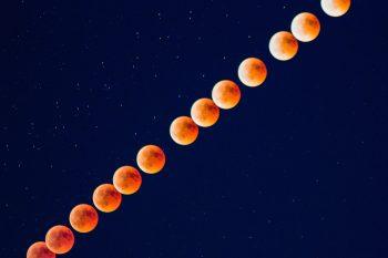 Das Jahr mit dem Mond 2