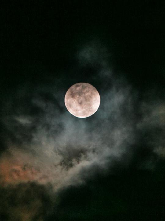 Moonvibes Oktober II: Vollmond in Stier am 31.10.