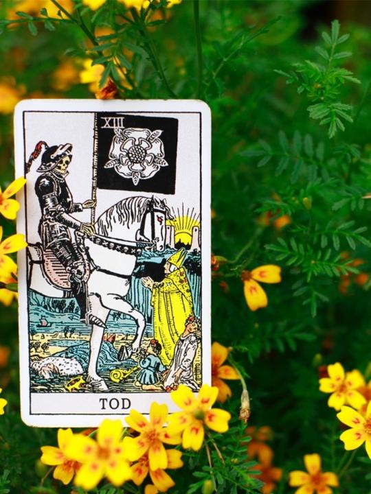 Tarot Basics #13: Tod