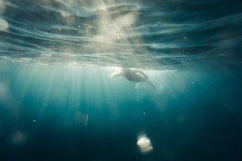 Mindful Embodiment II: Das Wasserelement und Sinnlichkeit 1